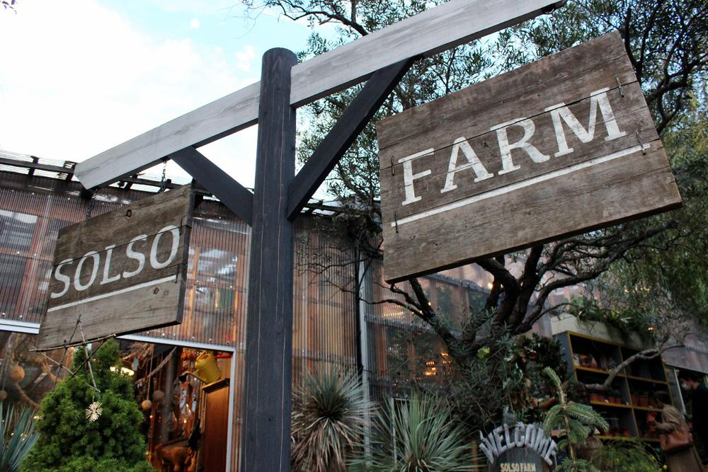 まるでハワイにいるかのように、心地よい農園「SOLSO FARM(ソルソファーム)」