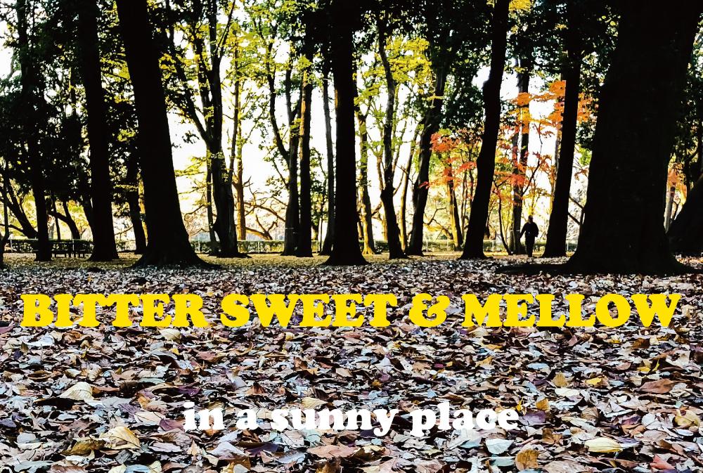 「陽だまり」を感じて。心地よく温まれるメロウな15曲。BITTER SWEET & MELLOW : IN A SUNNY PLACE【プレイリスト】