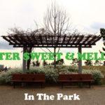 うららかな春の午後。公園を散歩するとき聴きたくなるメロウな15曲。BITTER SWEET & MELLOW : IN THE PARK【プレイリスト】