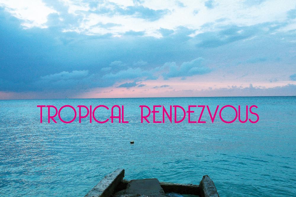 アナログレコード・オンリーのミックス「TROPICAL RENDEZVOUS」を作りました。