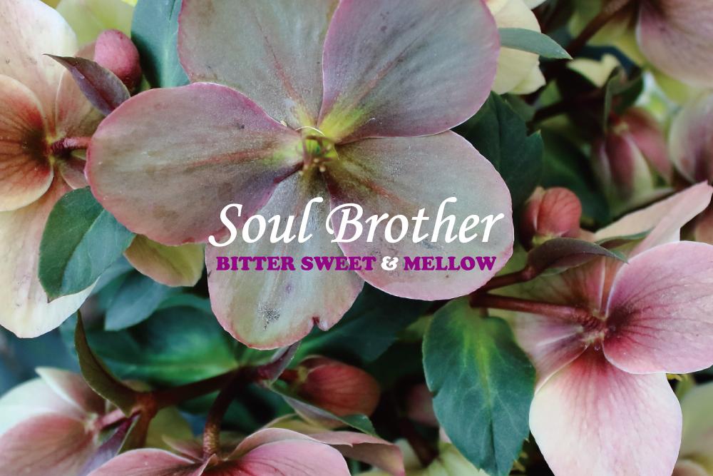 70年代男性ソウルグループのとろけるように甘く、メロウな15曲。BITTER SWEET & MELLOW : Soul Brother【プレイリスト】