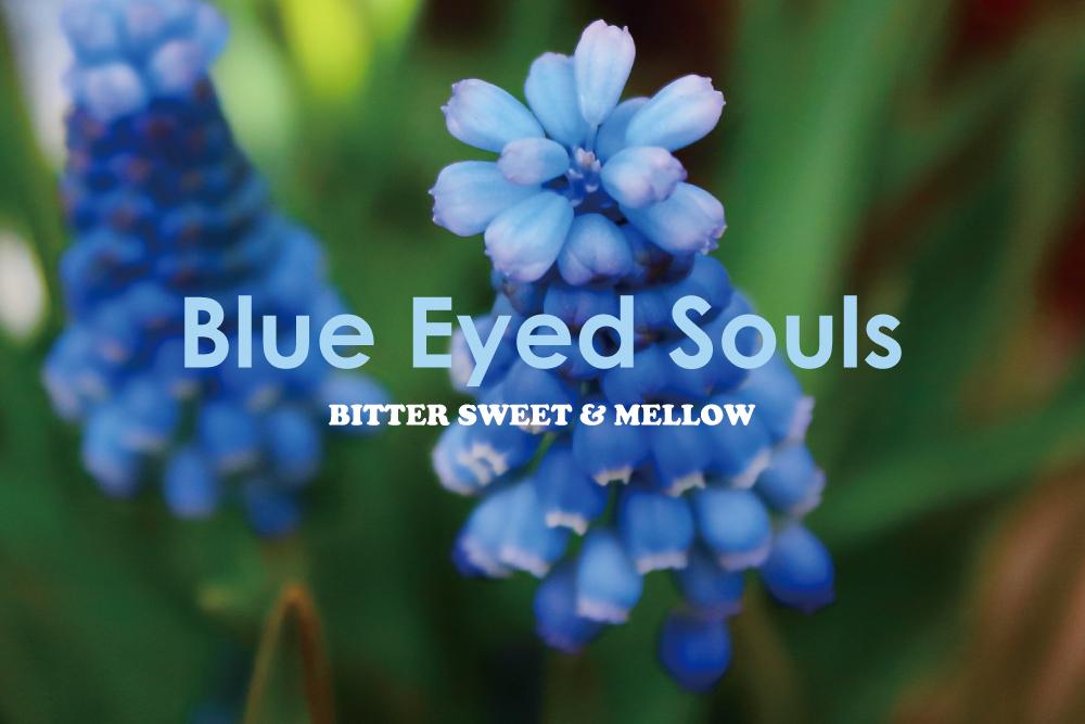 ブルー・アイド・ソウルの爽やかでメロウな15曲。BITTER SWEET & MELLOW : Blue Eyed Souls【プレイリスト】