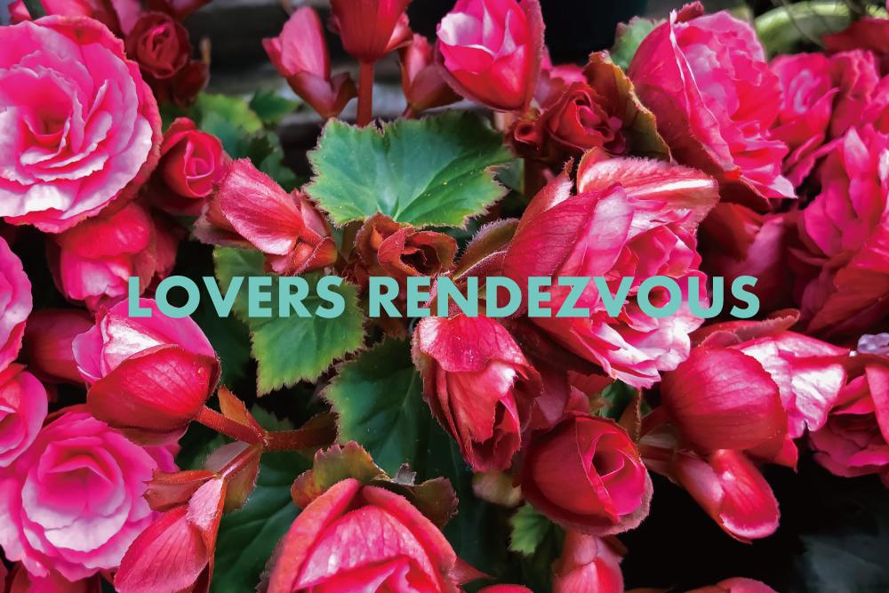 ほぼカヴァー曲。アナログレコード・オンリーのラヴァーズロック・ミックス「LOVERS RENDEZVOUS」を作りました。