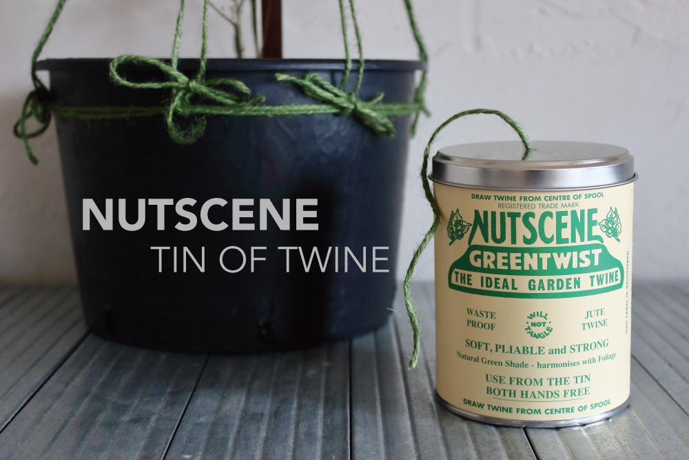 NUTSCENE(ナッツシーン)の缶入り麻ひもを使って、オリーブの樹形づくり