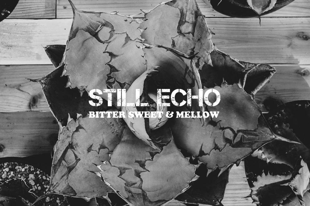 クールでメロウな和物ダブ15曲。BITTER SWEET & MELLOW : Still Echo【プレイリスト】