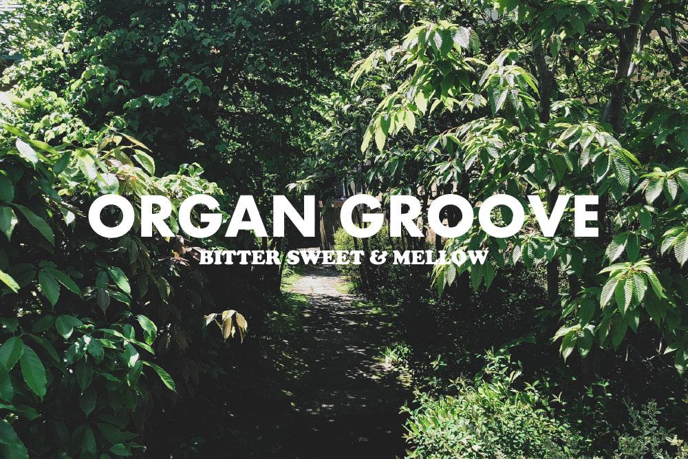 ファンキーでメロウなオルガン・グルーヴ15曲。BITTER SWEET & MELLOW : Organ Groove【プレイリスト】