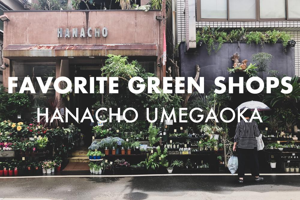 街に馴染んだ自然な佇まい。世田谷 梅丘にある花屋・グリーンショップ「HANACHO」