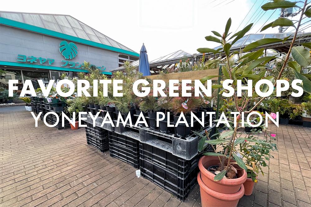 横浜 港北区にある大型園芸店「ヨネヤマプランテイション」が、凄くいい。